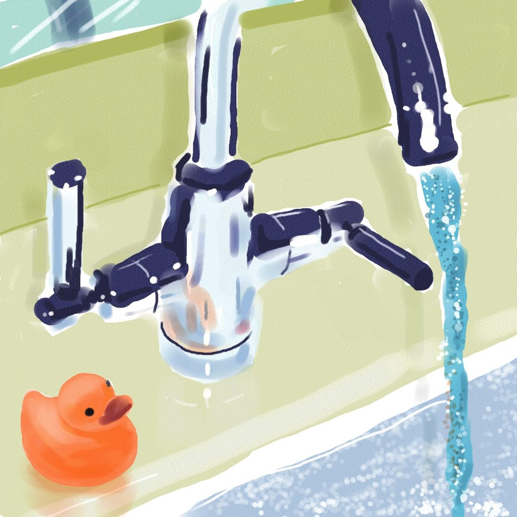 Sink and Duck